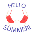 T shirt graphics Hello summer Sexy bust vector image vector image