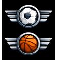 Basketball and soccer balls vector image