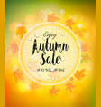 enjoy autumn sale background with autumn leaves vector image