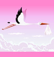 flying stork delivering girl vector image