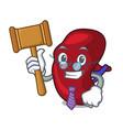 judge spleen mascot cartoon style vector image