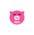 Pink Pig in sunglasses with inscription sale vector image