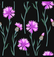 seamless pattern with colorful cornflowers vector image vector image