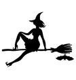 witch bat vector image vector image