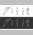 a set of drawn flowers black and white options vector image vector image