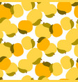 apricot seamless pattern on white vector image