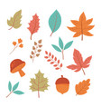 background autumn acorn mushroom leaves foliage vector image