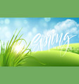 frash spring green grass landscape background with vector image vector image