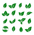 set of green leaf icons vector image vector image