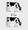 cow cow eating grass cow isolated set of vector image