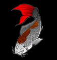 koi hand drawn image vector image