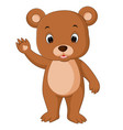 cute baby bears cartoon vector image vector image