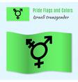 Israeli transgender and genderqueer pride flag vector image vector image