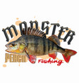 monster perch fishingcdr vector image vector image