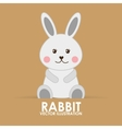 rabbit cute vector image