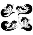 Surfing Shark Sketch vector image