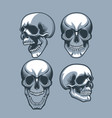 a set of four skulls looking in different vector image vector image
