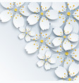 background with white sakura flower vector image vector image