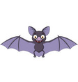 cartoon bat isolated on white background vector image vector image