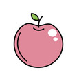 delicious apple fruit with exotic food vector image vector image