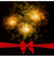 Fireworks Salute with Bow vector image