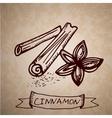 Hand drawn cinnamon sticks vector image vector image