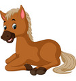 horse sitting cartoon vector image vector image