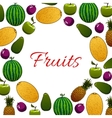 Organic fruit poster for healthy food design vector image