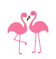 two pink flamingo set exotic tropical bird with vector image vector image