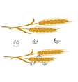 Cartoon ears of wheat character on white vector image