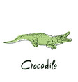 cute crocodile cartoon of vector image