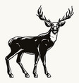 deer black silhouette concept vector image