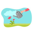 watering plant vector image vector image
