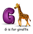animals alphabet g is for giraffe vector image vector image