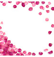 banner of pink rose petals vector image vector image