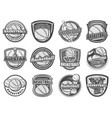 basketball ball basket player sport icons vector image vector image