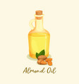 bottle with golden almond oil or jar near nuts vector image vector image