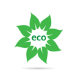 eco leaf sign vector image