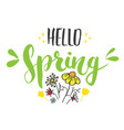 hello spring calligraphy lettering handwritten vector image vector image