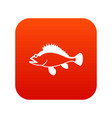 rose fish sebastes norvegicus icon digital red vector image vector image