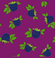 seamless pattern blackberry on lilac background vector image vector image