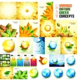 Various nature autumn and summer concepts vector image vector image