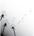 Blow Dandelion on white vector image