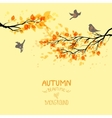 Branches with autumn leaves and birds vector image vector image