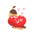 funny jack russell terrier dog with red heart vector image vector image