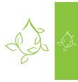 green droplet leaf vector image vector image