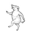 happy pig dancing drawing retro black and white vector image vector image