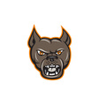 Pitbull Dog Mongrel Head Angry Cartoon vector image vector image