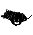 running wild boar black and white vector image vector image