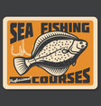 sea fishing courses flounder vector image vector image